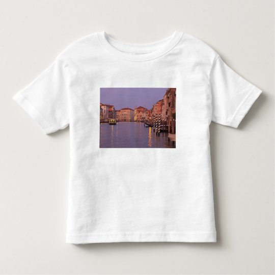 early morning Grand Canal Tour, Venice, Italy Toddler T-shirt