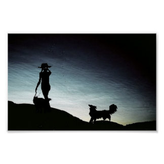 Early morning herd Border Collie Poster
