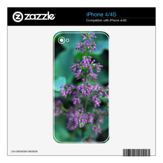 Early Morning Lilacs iPhone 4S Decal