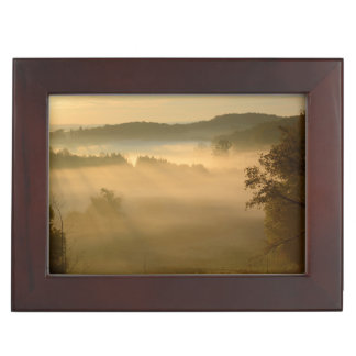 Early morning mist memory box