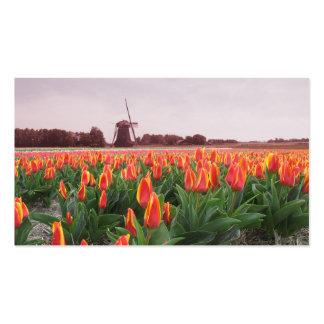 Early Morning Orange Tulip Field Landscape Windmil Business Card