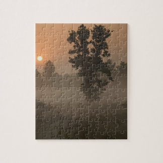 Early morning, rising sun and ground fog puzzle