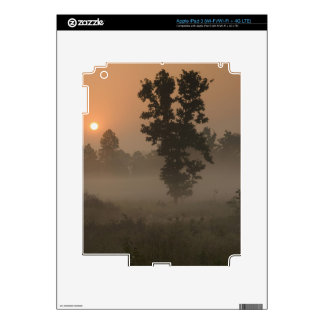 Early morning, rising sun and ground fog skin for iPad 3