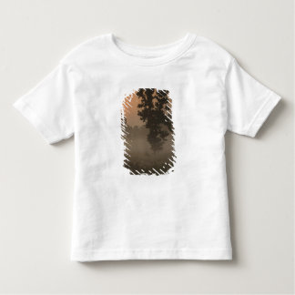 Early morning, rising sun and ground fog tshirt