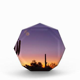 Early Morning Southwest Desert Moon Glow Acrylic Award