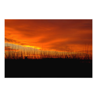 Early Morning Sunrise At Bolsa Chica Wetlands Photo Print
