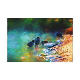 Early Morning Swim Canvas Print