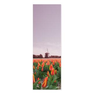 Early Morning Tulip Flowers Field Windmill Mini Business Card
