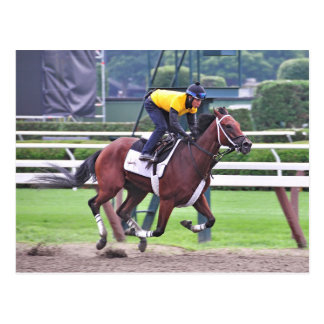 Early Morning Workouts at Saratoga Postcard