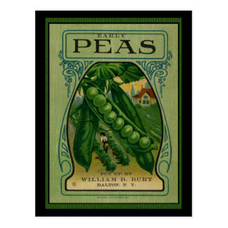 Early Peas Vintage Seed Packet Postcard
