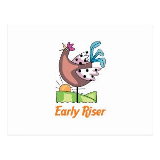 Early Riser Postcard