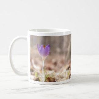Early Spring Crocus Flower Coffee Mug