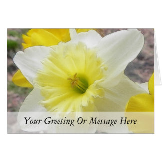 Early Spring Daffodil Card