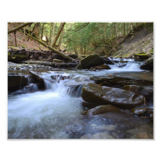 Early Spring Evening At The Stream. Photo Print