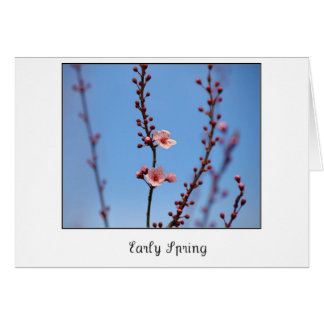 Early Spring Flowers Card