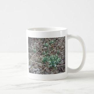 Early Spring flowers Coffee Mug