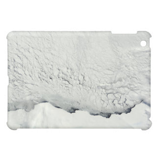 Early spring in the Antarctic iPad Mini Covers