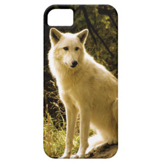 Early Spring iPhone 5 Case