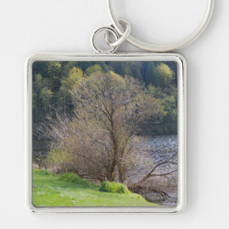 Early Spring Keychain