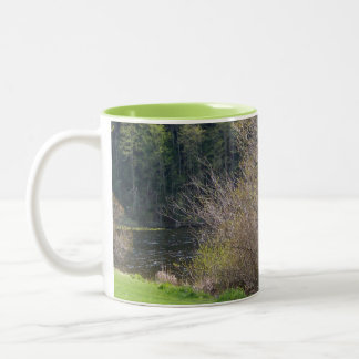 Early Spring Two-Tone Coffee Mug