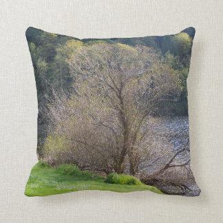 Early Spring Throw Pillows