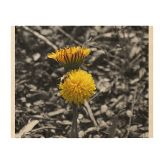 Early Spring Pollination Wood Wall Art