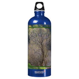 Early Spring SIGG Traveler 1.0L Water Bottle