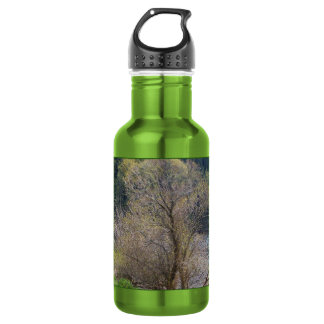 Early Spring Water Bottle