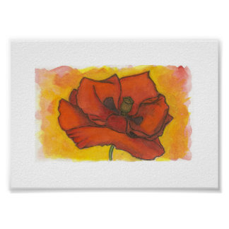 Early Summer Poppy 5x7 Watercolor Art Print