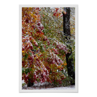 Early Winter Poster