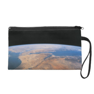 Earth 2 wristlet purse