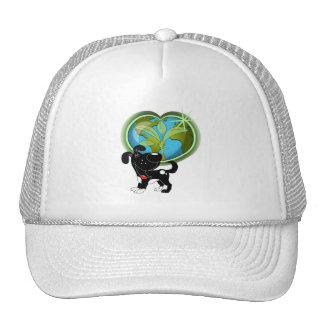 Earth Day and Shadow Hat