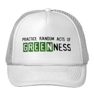 Earth Day - Be Green Trucker Hat