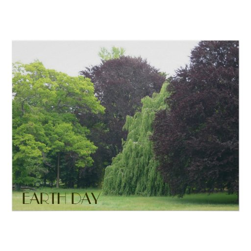 Earth Day-Beautiful Trees Poster