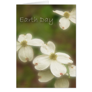 Earth Day - Dogwood Blossoms Card