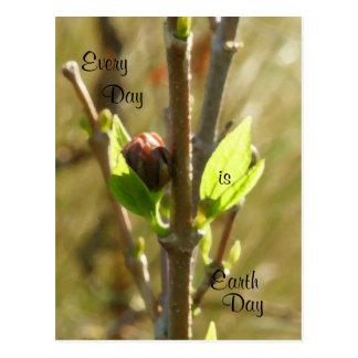 Earth Day-Native Flora Postcard