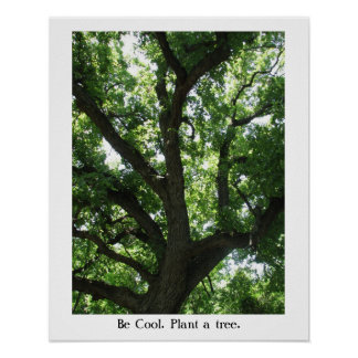Earth Day Plant-A-Tree Poster