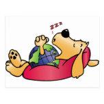 Earth Dog Sleeping Post Card