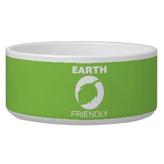 Earth Friendly Bowl