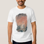 Earth from Space 15 T-Shirt
