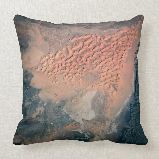Earth from Space 15 Throw Pillow
