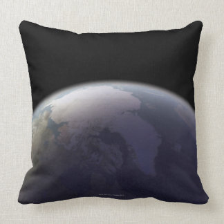 Earth from Space 9 Pillows
