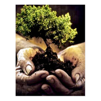 Earth Hands Postcard