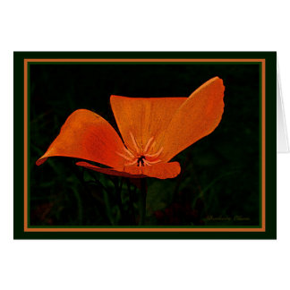 Earth Laughs in Flowers: Poppy.  Inside quote Card