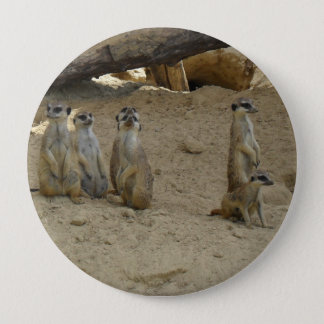 Earth male family pinback button