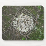 Earth Nest Mouse Pad