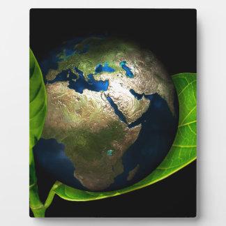 Earth Plaque