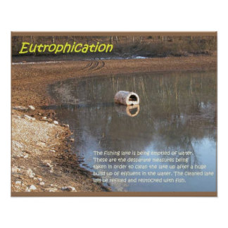 Earth science, Environment, Eutrophication Poster
