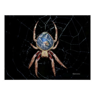 Earth Spider Poster