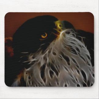 Earth to sky eagle mouse pad